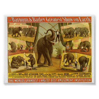 Performing Elephants Barnum & Bailey Circus Poster