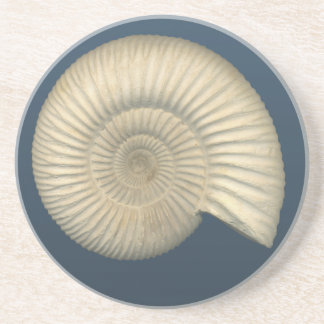 Perisphinctes Ammonite Coaster