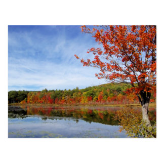 Perkins Pond Autumn Scene Postcard