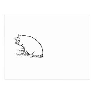 Perky Pig Sketch Design Postcard