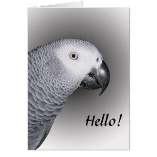 Perroquet de gris africain cartes de vœux