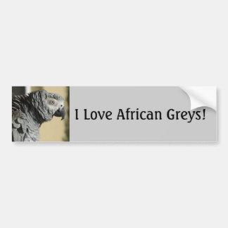 Perroquet de gris africain du Congo avec les Autocollant De Voiture