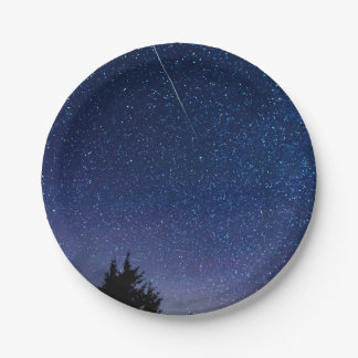 Perseid Meteor Shower Paper Plate