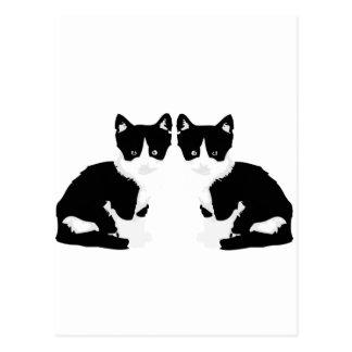 persephone&hades 'tuxedo cat' postcard