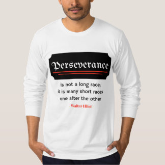 Perseverance Quote Motivational Shirt