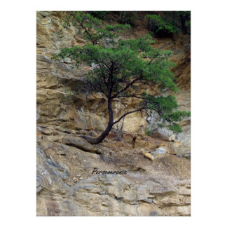 Perseverance Tree Poster
