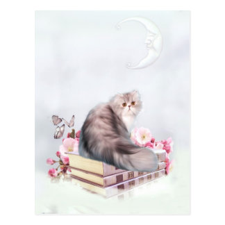 Persian cat and books postcard