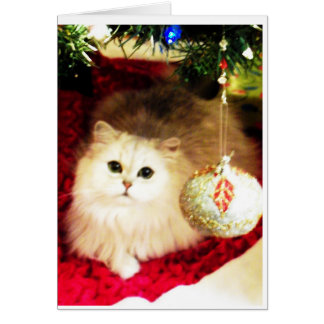 Persian Cat Christmas Card