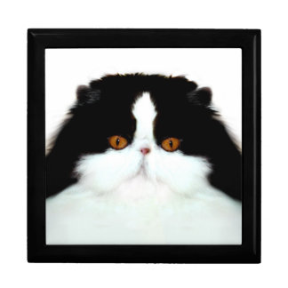 Persian cat face gift box