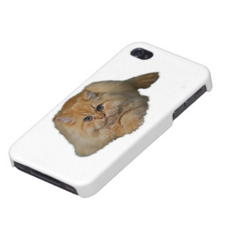 Persian Cat Cases For iPhone 4