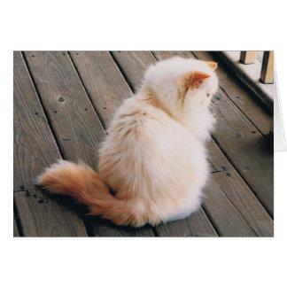 Persian Cat Note Card