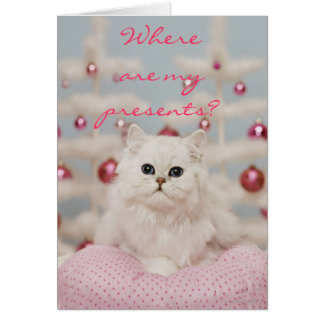 Persian cat sitting on pink pillow card