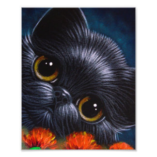 "PERSIAN CAT WITH POPPY FLOWERS 8"" X 10"" PRINT"