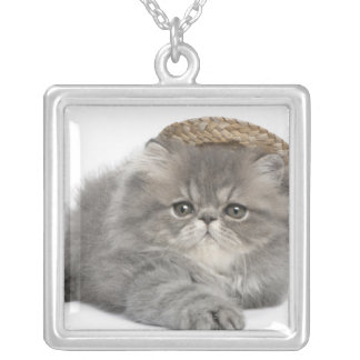 Persian Kitten (2 months old) wearing a straw Silver Plated Necklace