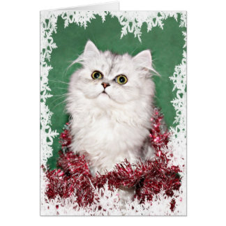 Persian kitten Christmas Card