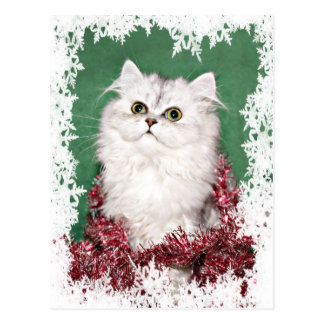 Persian kitten Christmas Postcard