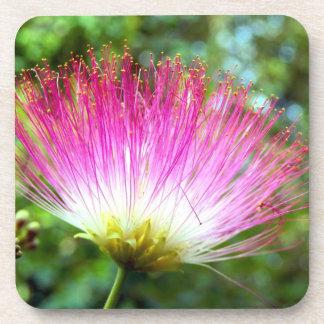 Persian Silk Tree Flower Hard Plastic Coaster