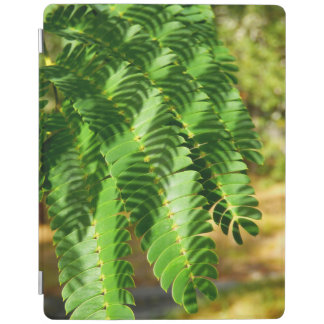 Persian Silk Tree Leaves iPad Cover