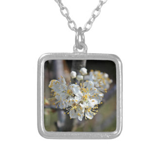 persimmion1 silver plated necklace