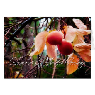 Persimmons Holiday Card