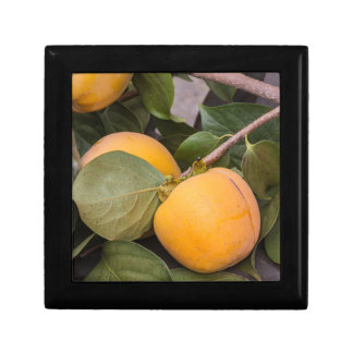persimmons in autumn jewelry boxes