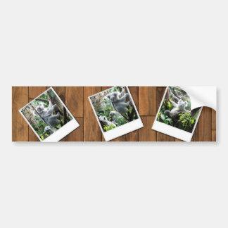 Personalizable Instant Multi Photo Frame Bumper Sticker