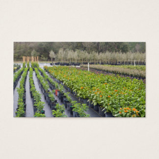 Personalize-2 Sided-Nursery and Gardening Business Card