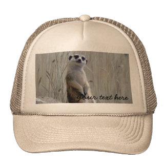 Personalize this cute meerkat trucker hat