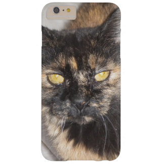Personalize this Phone Case with your Pet's Photo