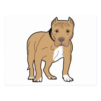 Personalized American Pitbull Dog Postcard