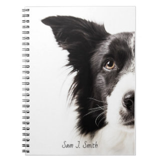 Personalized// Border Collie Close-up Notebook