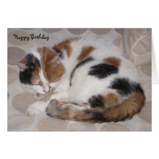 Personalized Calico cat curled up asleep Birthday Card