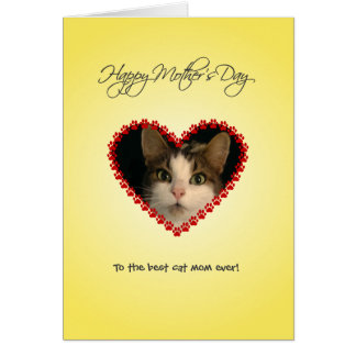 Personalized cat mom Mothers Day Card