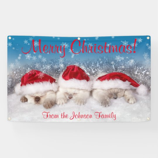 Personalized Christmas Banner Kittens Santa Hats