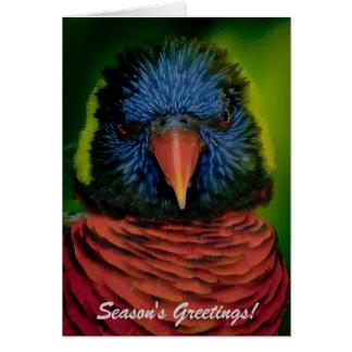 Personalized Christmas Card - Lorikeet