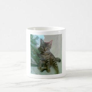 Personalized cute cat mugs