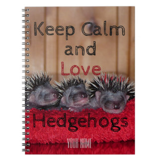 Personalized || Keep calm and love hedgehogs Notebook
