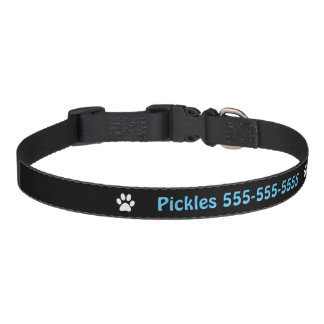 Personalized Name & Number Dog Collar