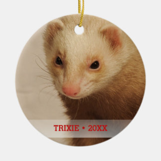 Personalized Pet Ferret Photo Name Christmas Tree Ceramic Ornament