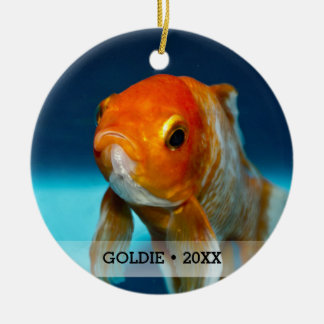 Personalized Pet Fish Photo Name Christmas Tree Ceramic Ornament