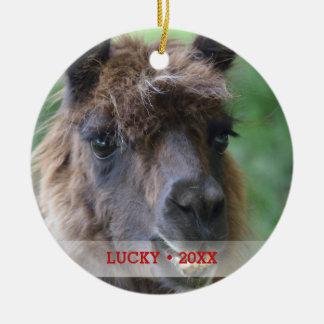 Personalized Pet Llama Photo & Name Christmas Tree Ceramic Ornament