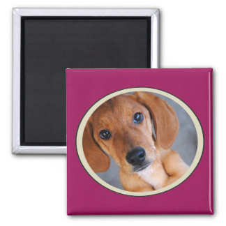Personalized Pet Photo Dark Pink Frame Magnet