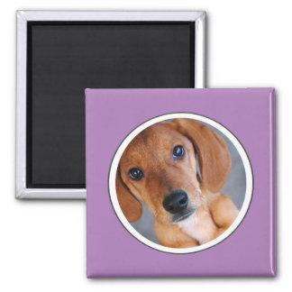 Personalized Pet Photo Lavender Frame Magnet