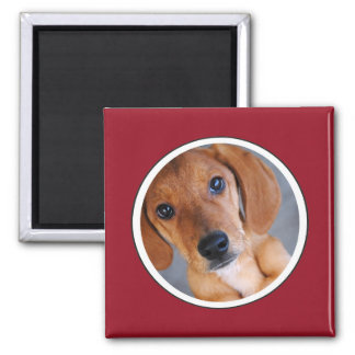 Personalized Pet Photo Red Frame Magnet