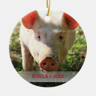 Personalized Pet Pig Photo & Name Christmas Tree Ceramic Ornament