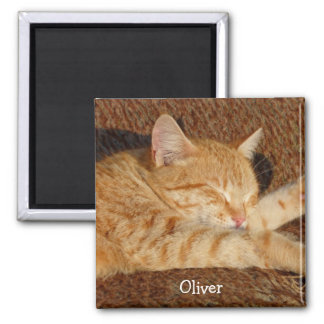 Personalized pet's photo magnet