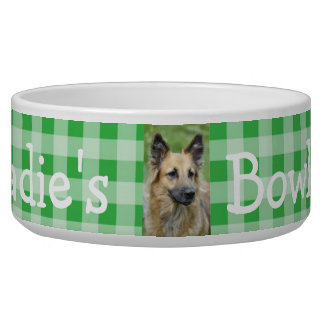 Personalized Photo and Name Dog Bowl Green Gingham