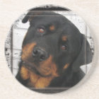 Personalized rottweiler coaster