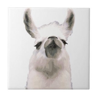 Personalized Snooty Snobby Llama Tile