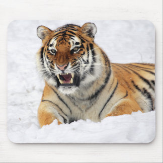 Personalized Tiger Wild Animal Mouse Pad